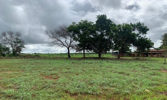 Justiça suspende compra de terreno da prefeitura por suspeita de superfaturamento