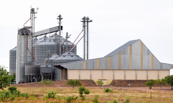 Governo afirma que fará leilão ou cessão onerosa dos silos de grãos
