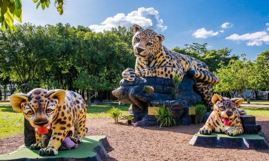 PARQUE DO RIO BRANCO: Durante pandemia, Prefeitura gasta R$ 7 milhões com Selvinha Amazônica