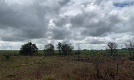 Prefeitura recua e vai desapropriar terreno que seria comprado por 2,8 milhões