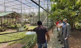 MP fiscaliza bosque após denúncia de maus tratos aos animais