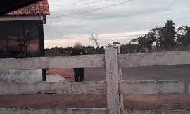 Mesmo após deixar o cargo, ex-prefeita usa Guarda Municipal para segurança em fazenda