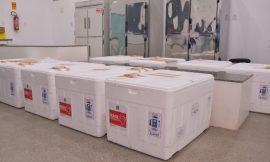 Boa Vista recebe 10,6 mil vacinas da Sesau