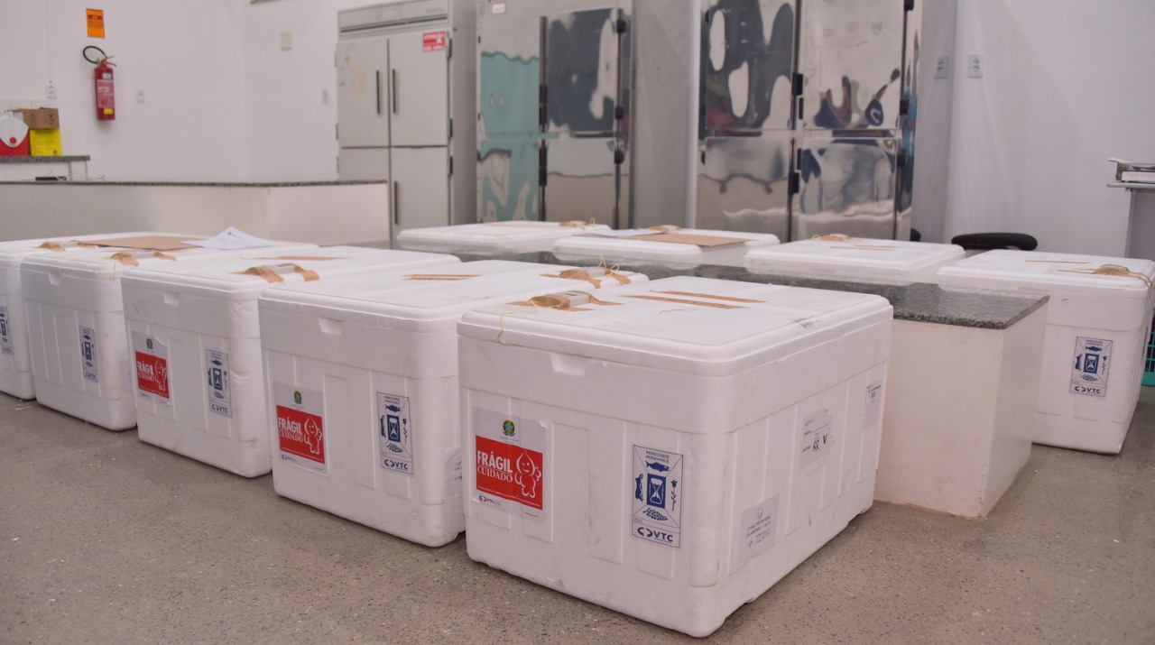 You are currently viewing Boa Vista recebe 10,6 mil vacinas da Sesau