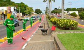 Mesmo na pandemia, Prefeitura gasta mais com plantinhas do que saúde