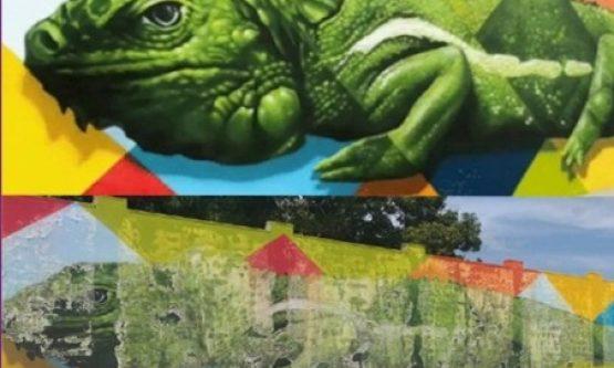 TCERR determina que mural da Prefeitura seja revitalizado sem ônus