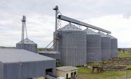 Ex-diretores de cooperativa são denunciados pelo MPRR por desvios milionários de grãos